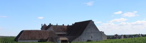 #1分钟产区游#出产顶级勃艮第葡萄酒的村庄:夜丘篇