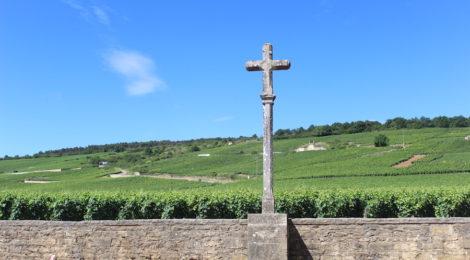 #1分钟产区游#出产顶级勃艮第葡萄酒的村庄:基础知识